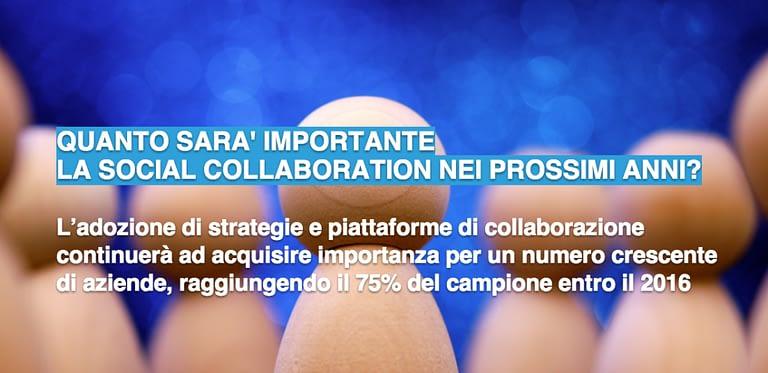 social collaboration survey