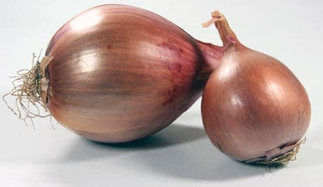 two dry onions